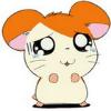 1001_13274576_avatar