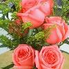 1001_1223543624_avatar