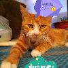1001_351127788_avatar