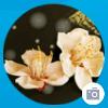 1001_521689197_avatar