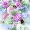 1001_34610168_avatar