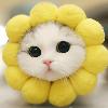 1001_324206112_avatar