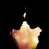 1001_203660385_avatar